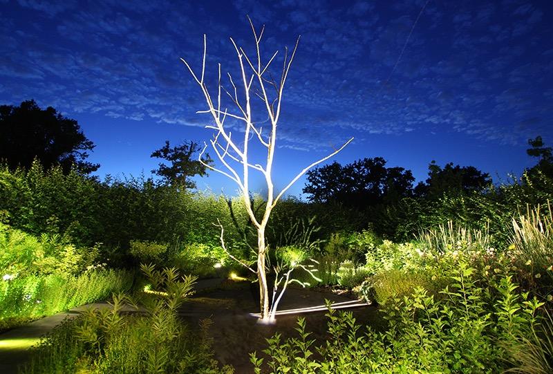 Jardins de Lumière Chaumont